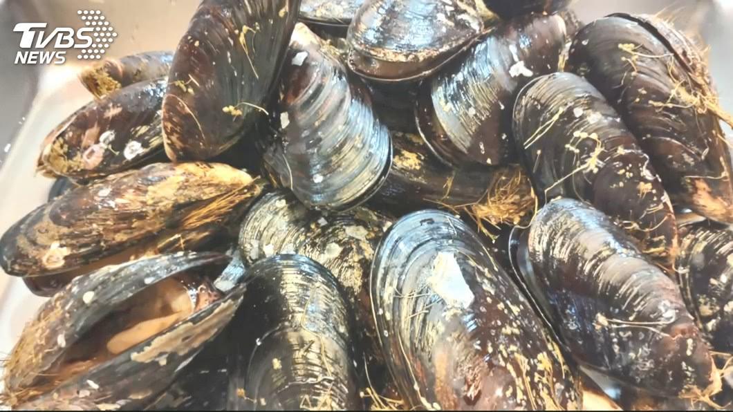 馬祖「深海威而鋼」開賣了! 淡菜進入肥美季