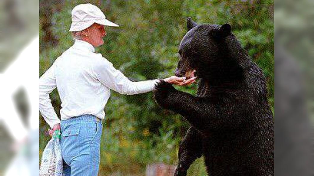 圖/翻攝自N.C. Coastal Fed推特 婦人伴熊近30年慘死森林 真相曝光逼哭眾人