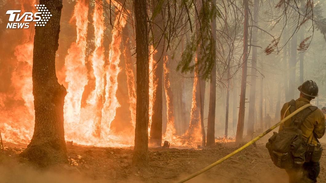 圖/達志影像路透社 本世紀結束前 全球6種氣候浩劫恐同時來襲