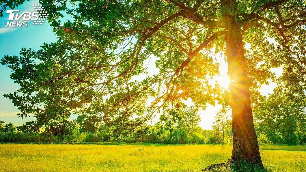 示意圖/TVBS 對抗全球暖化 哈佛科學家提議用這方法擋太陽