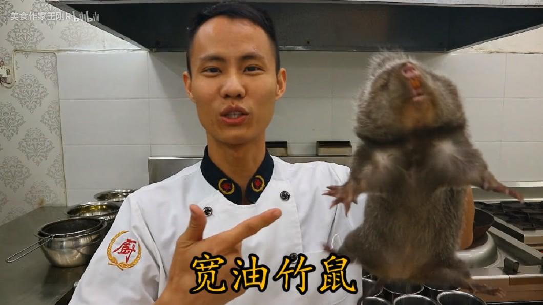 圖/翻攝YouTube 「可愛但肉香」!廚師料理竹鼠片 2天破百萬點閱卻惹議