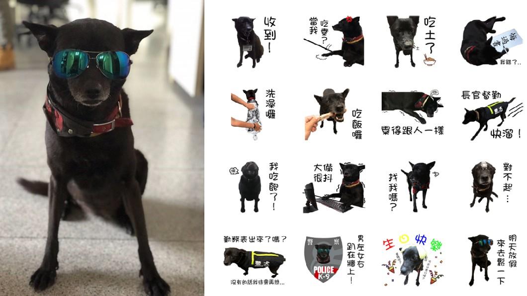 圖/覺民派出所 提供 自己的罐罐自己賺 明星警犬小黑出貼圖賣萌