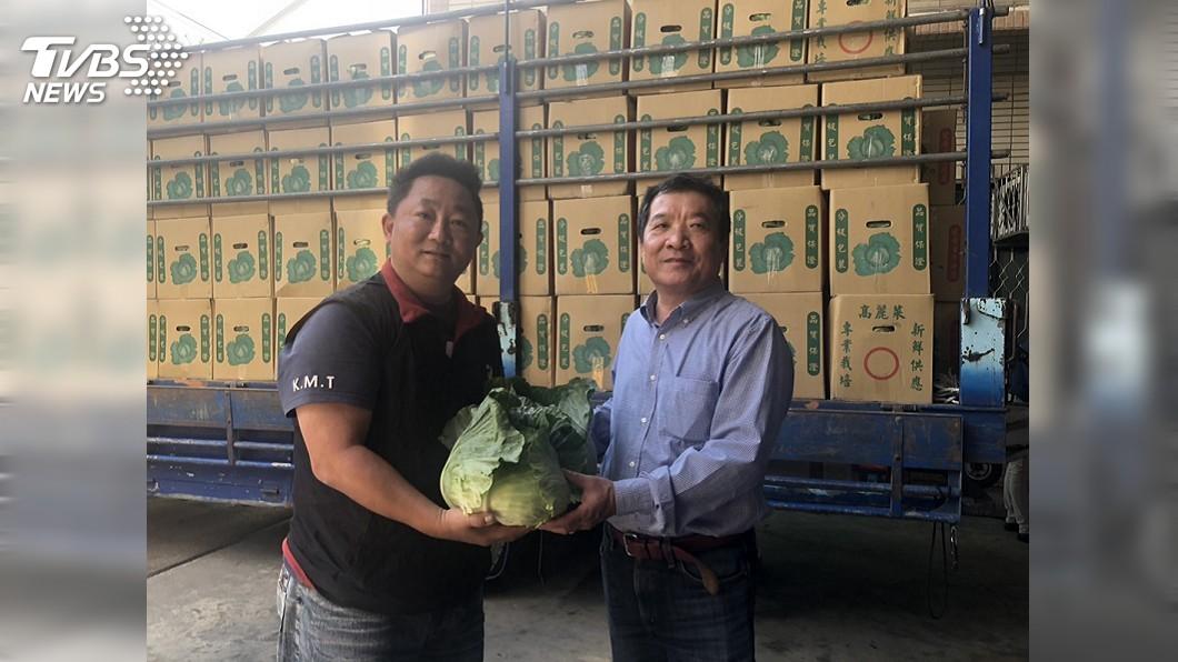 圖/中央社 台中市議員認購逾2000顆高麗菜 做愛心助菜農