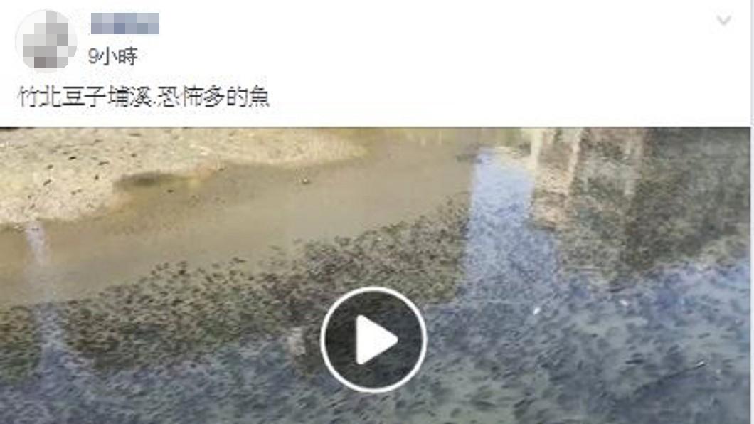 圖/翻攝新竹爆料公社臉書