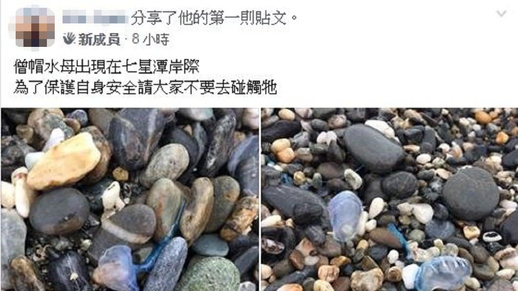 圖/翻攝花蓮人臉書