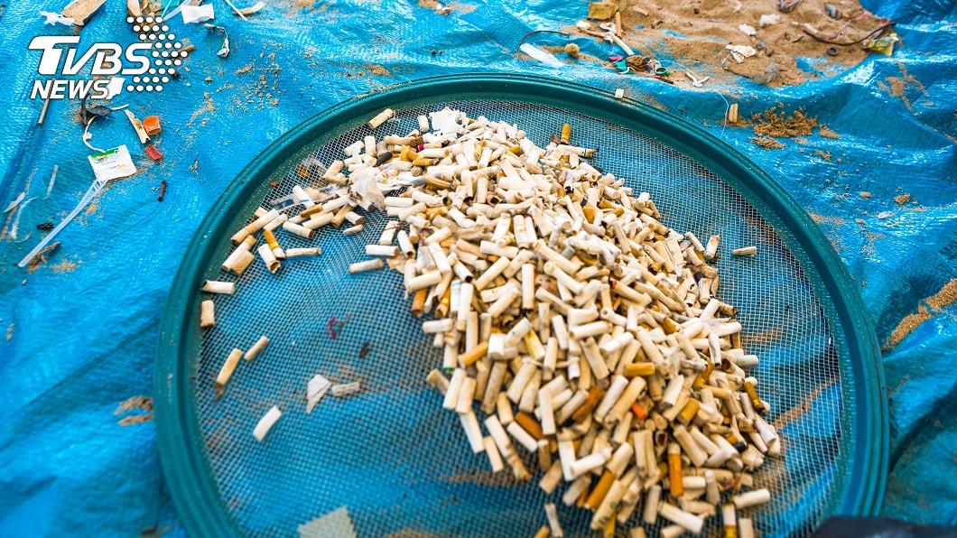 示意圖。圖/shutterstock 西安妙招治亂丟菸蒂 1公斤菸頭換2桶食用油