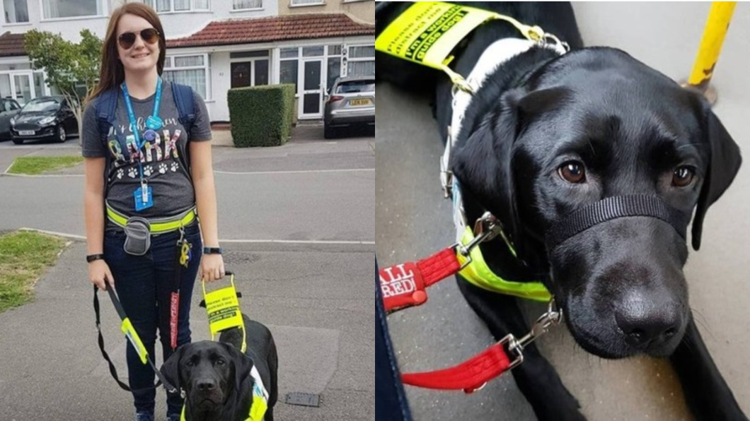 圖/翻攝自Megan Taylor臉書 「妳的導盲犬是假的」 盲女被超無知路人趕下公車