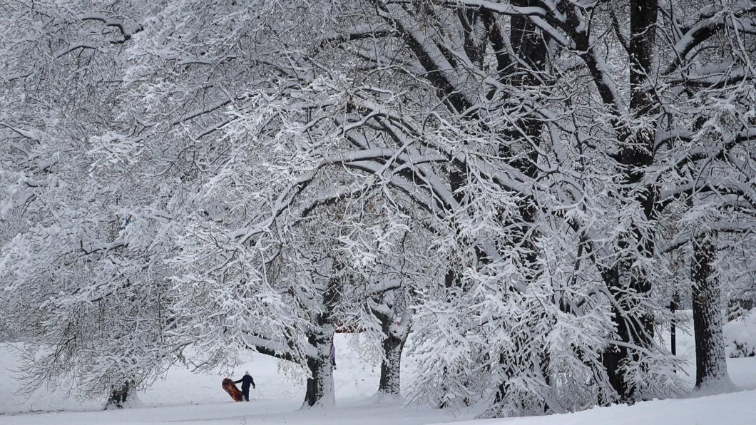圖/達志影像美聯社 暴風雪襲美東 杜勒斯機場數百班機取消