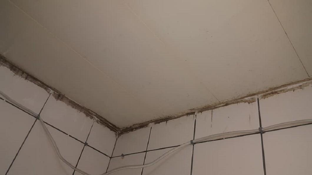圖/翻攝自臉書「Costco好市多 商品經驗老實說」 好市多「廁所神器」10分鐘霉斑全滅光 對比照網友驚呼