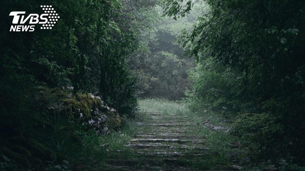 示意圖/TVBS 森林詭異活春宮 念誦祝禱「烏鴉屍血塗額頭」完如邪教