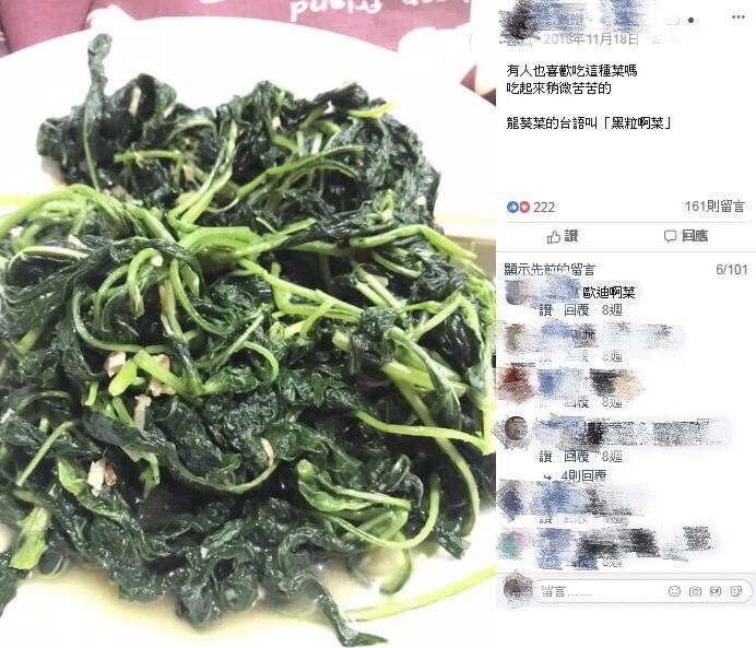 龍葵也有眾多說法,像是「黑粒啊」菜。圖/翻攝自爆廢公社