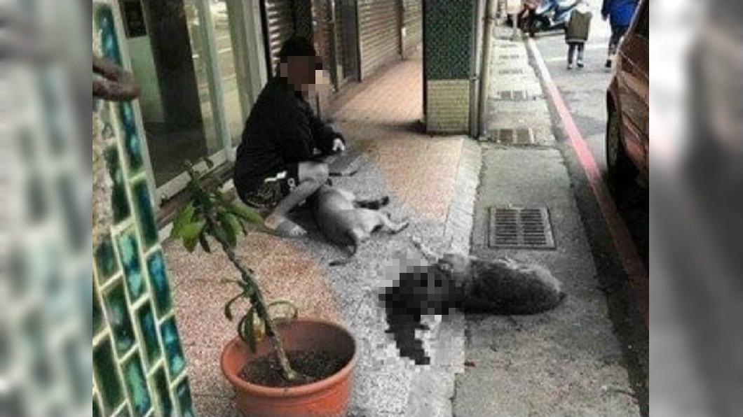圖/翻攝自基隆人踹共臉書 放任「比特犬咬死浪浪」 冷血飼主2度虐狗面露微笑
