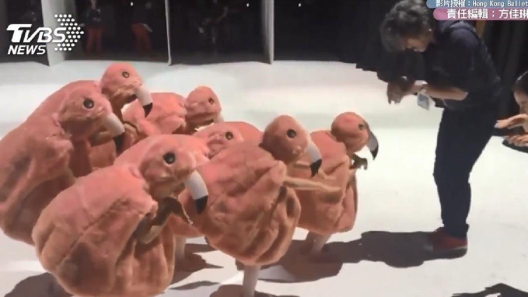 圖/香港芭蕾舞團授權提供