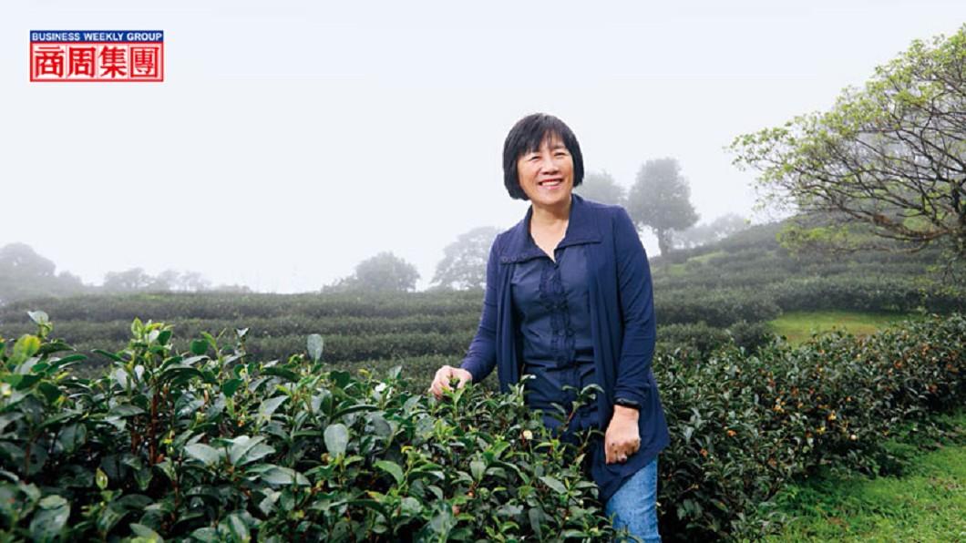 台灣農林公司董事長林金燕,圖/楊文財攝 【商周】新智農》 農林女董座,要把手搖茶紅利留在台灣