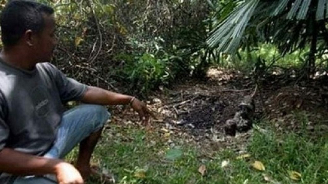 村民認為女童是在別的地方殺害,然後棄屍油棕園。圖/翻攝自 馬來西亞《中國報》