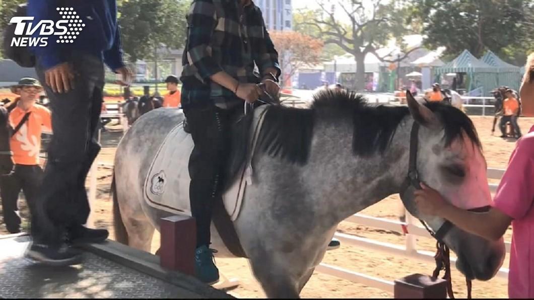 圖/TVBS 遊客發現馴馬師拿皮鞭打馬 中市府:指令輔助作用
