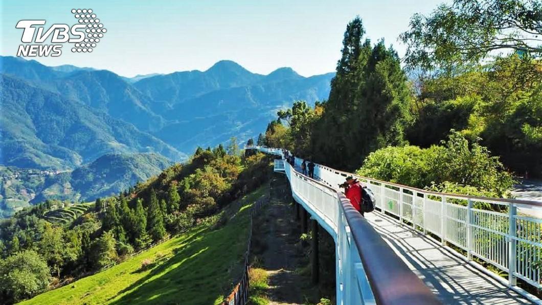阿里山健行景點-清淨高空景觀步道(圖/Tripbaa趣吧!亞洲自由行專家 阿里山櫻花健行之旅 超輕鬆玩法報你知