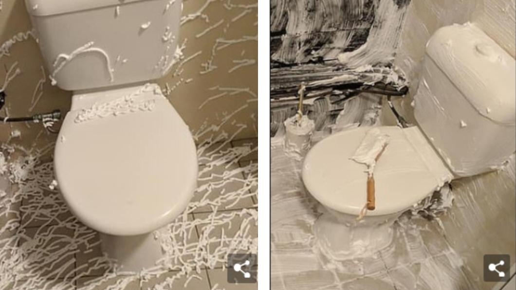 圖/翻攝自每日郵報 尿騷味超臭!澳洲媽用這個「塗滿廁所」 效果超驚人