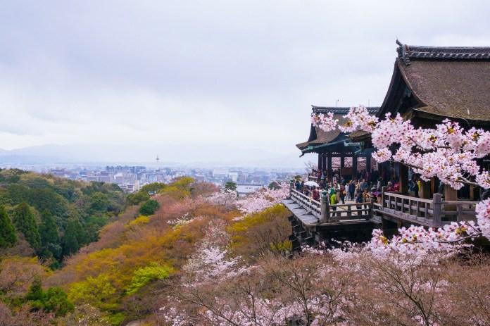 亞洲櫻花季景點-日本京都清水寺。 圖/翻攝自Tripbaa趣吧!亞洲自由行專家