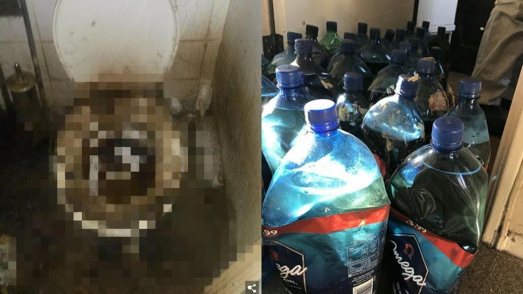 圖/翻攝自每日郵報 清潔夫婦進屋打掃…驚見「400袋屎+270瓶尿」崩潰