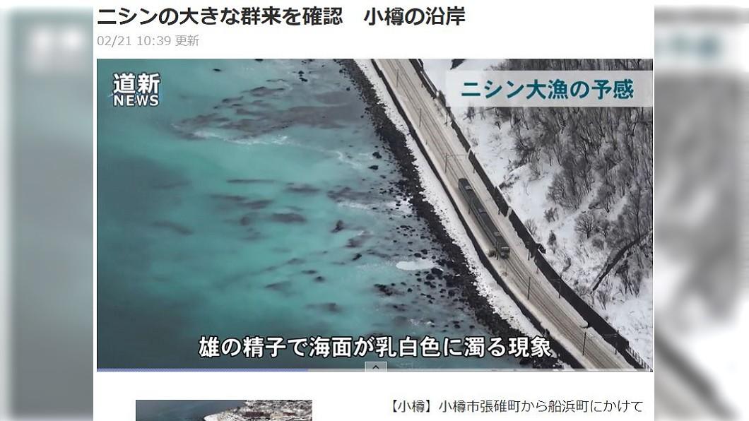 圖/翻攝自《北海道新聞》