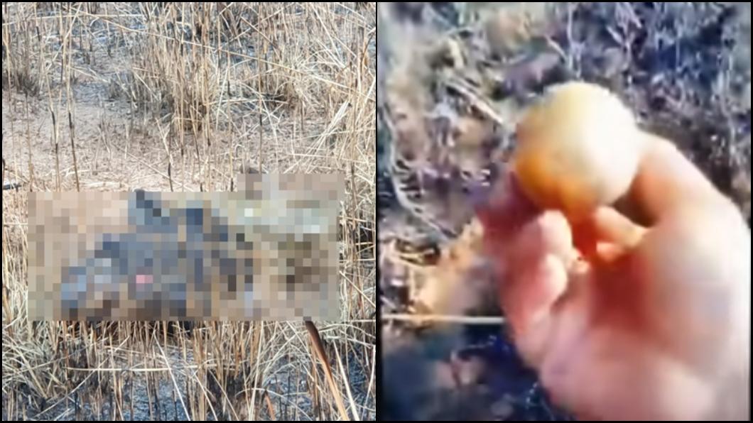 圖/翻攝YouTube 撿到手榴彈好嗨!男開直播炫耀 下秒被炸成肉醬…