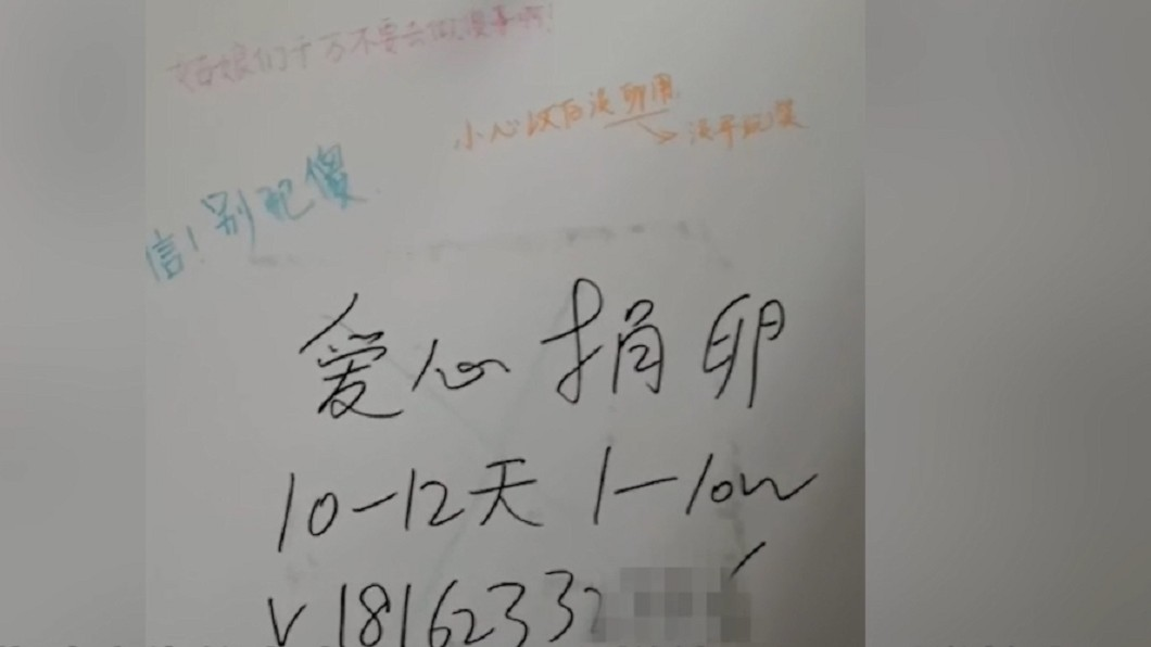 圖/翻攝自澎派新聞 為了27萬...無麻醉賣卵換錢 女大生:痛得要死!