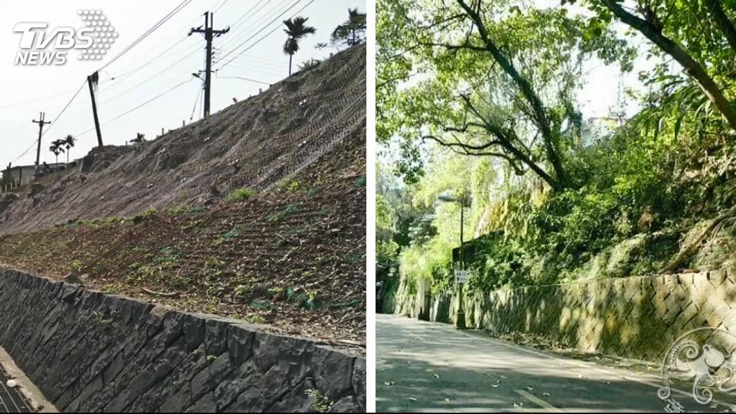 圖/TVBS 防止落石做邊坡 東豐自行車綠廊沒了 綠樹砍光