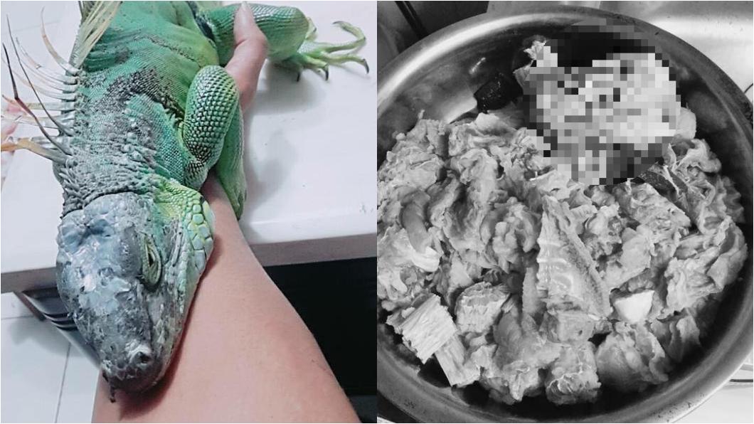 圖/翻攝廚藝公社 慎入!綠鬣蜥「剝皮下鍋煮」2佳餚 網友嚇傻