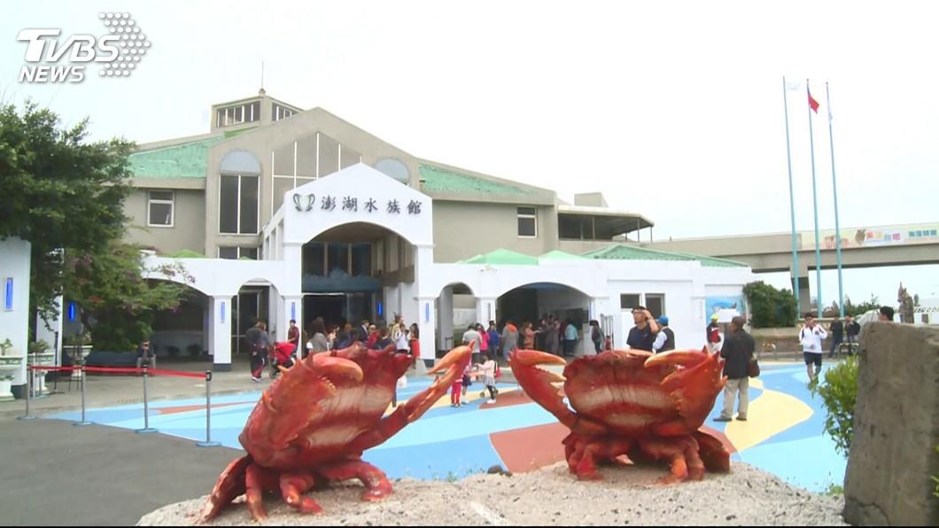 圖/TVBS 重新開幕! 澎湖水族館14m拱形海底隧道吸睛