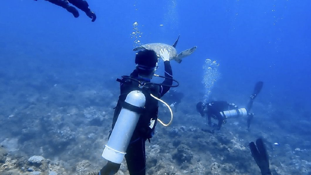 圖/翻攝臉書「靠北潛水」