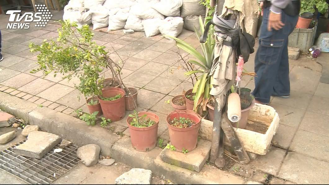 不少民眾會有種植盆栽在自家門前的習慣。(示意圖/TVBS) 女童摘盆栽葉片…亂撒櫃檯給老闆娘看 父冷回這句她氣炸
