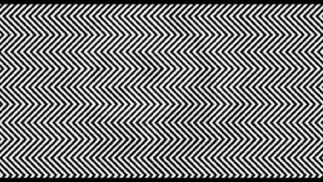 黑白曲線中藏著什麼動物?圖/翻攝網路 僅「1%」人看見!黑白曲線藏某種動物 你找到了嗎?