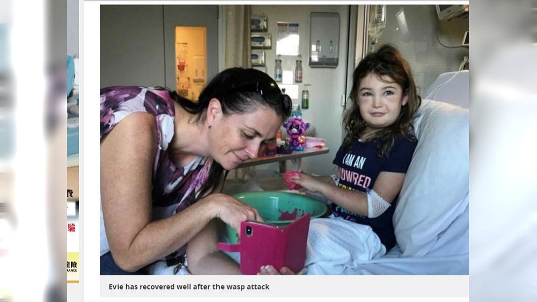 澳洲一名7歲女童慘遭大黃蜂群起攻擊,全身上下被螫了300多下,險些喪命。(圖/翻攝自鏡報)