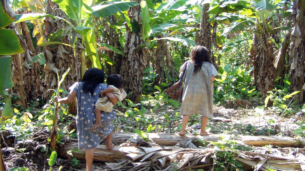 圖/達志影像美聯社 地表最強心臟!揭亞馬遜部落健康之秘