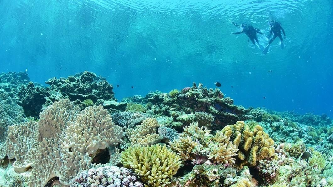 沖繩浮潛地點-Chibishi無人島。(圖/Tripbaa趣吧!亞洲自由行專家)