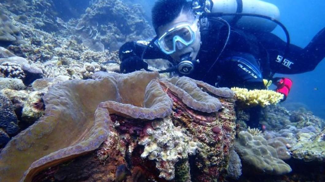 畢旅必去必玩景點-墾丁免證照水肺潛水體驗。(圖/Tripbaa趣吧!亞洲自由行專家)