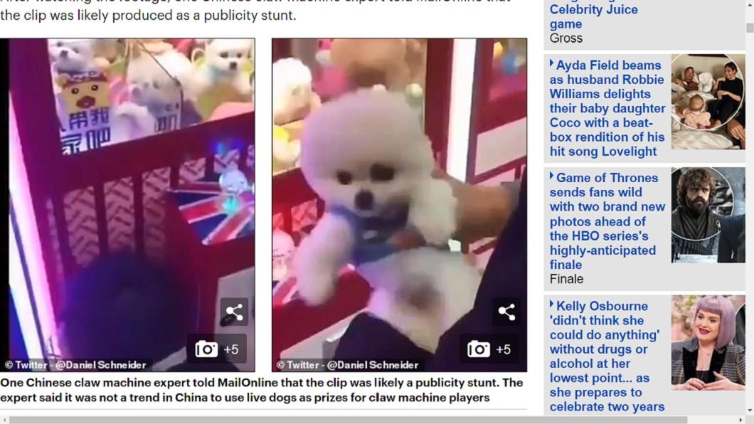 娃娃機內驚見活生生的「小白狗」。圖/翻攝自每日郵報