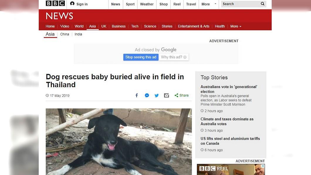 土裡露出嬰兒腿!狗狗發現救娃一命。圖/截自BBC