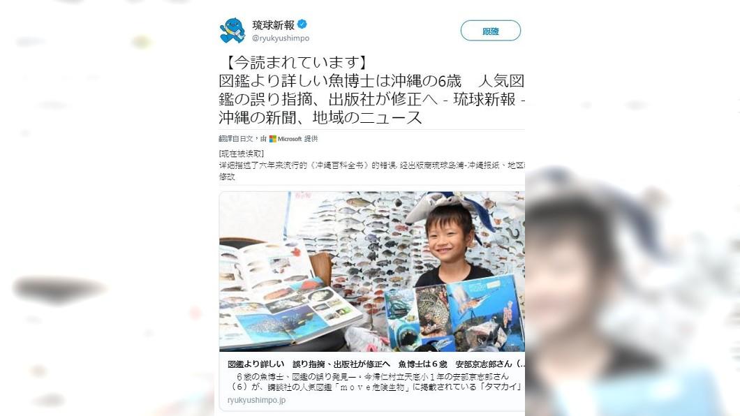 日本6歲童一眼揪出圖鑑照片出錯,令專家佩服。圖/TVBS 就看一眼!6歲男童揪出專業圖鑑錯誤 連專家都沒發現