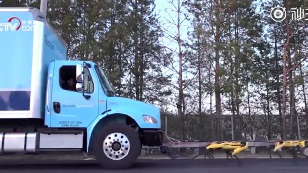 圖/翻攝自新浪资讯台微博 新研發機器狗力量大 可拖拉3噸重小飛機