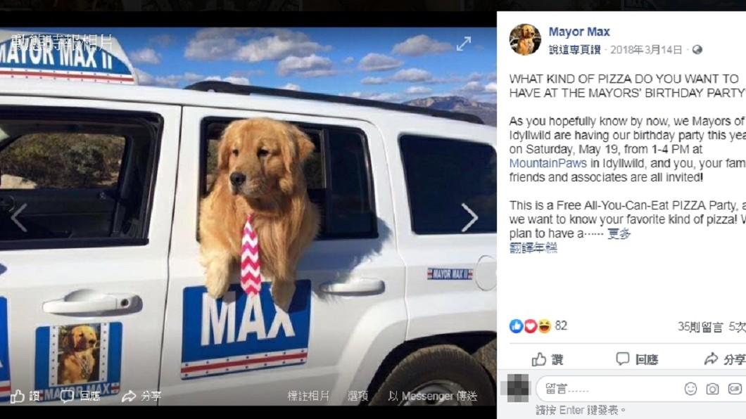 日有貓站長美有狗鎮長,黃金獵犬Max掌美國小鎮。圖/截自Mayor Max臉書粉絲專頁 黃金獵犬掌美國小鎮 狗鎮長有座車要盡職