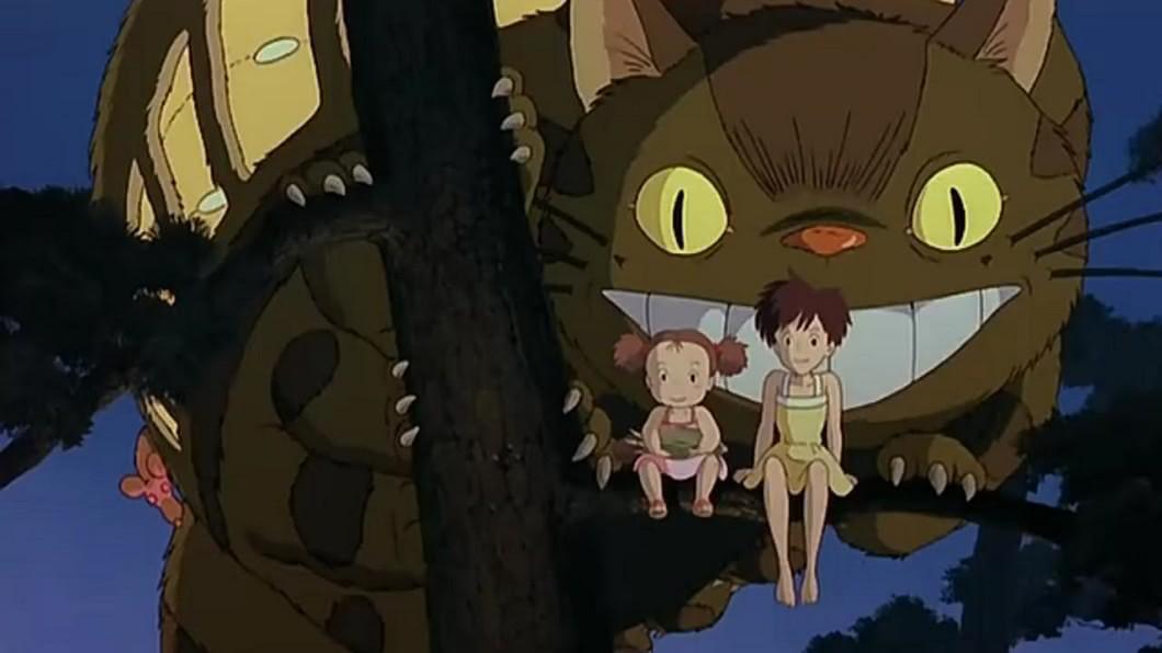 宮崎駿親口承認龍貓是很可怕的生物! 圖/IMDB 童年崩壞了! 宮崎駿說龍貓是吃肉的可怕生物!