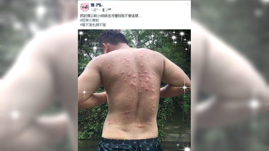有網友分享自己的背部遭到小黑蚊狂叮,讓人看了都不禁覺得癢了。(圖/翻攝自爆廢公社)