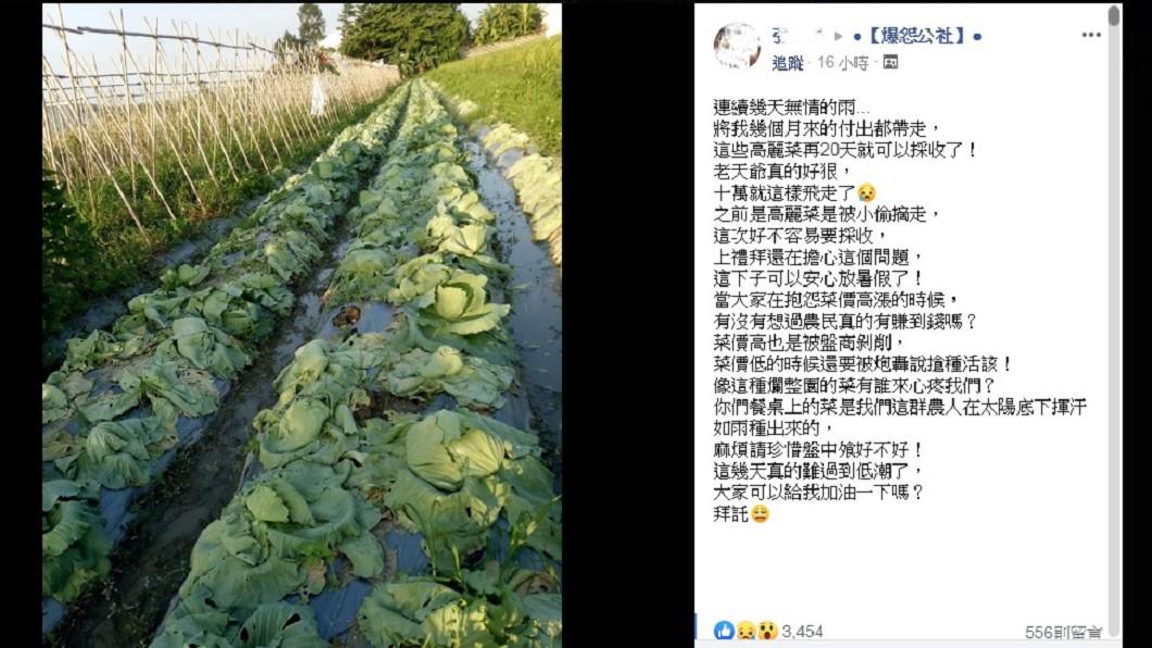 圖/翻攝自臉書「爆怨公社」 再20天就採收!卻因這場大雨10萬心血全泡湯
