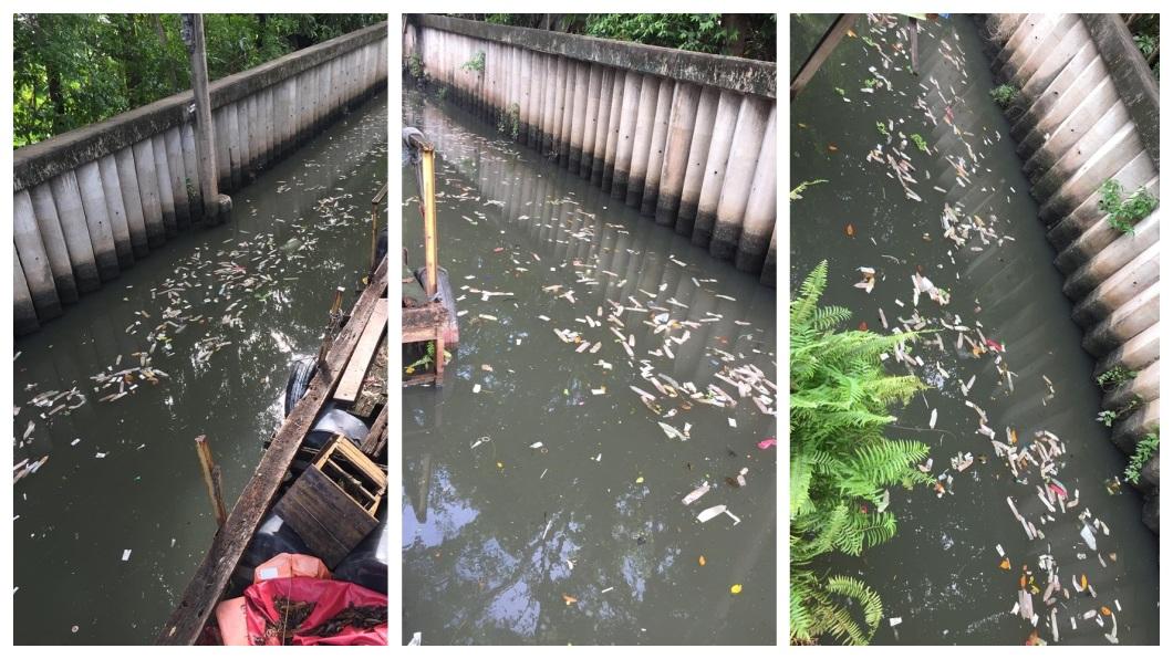 泰國曼谷一處運河水面上,竟飄著數百個用過的保險套。(圖/翻攝自臉書) 運河見滿滿烏賊飄來?他一看嚇呆 全是「用過的保險套」
