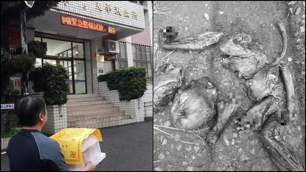 圖/台中市公民會館提供 台灣獼猴遇害!遭人「先殺再烤」扔公園廚餘桶