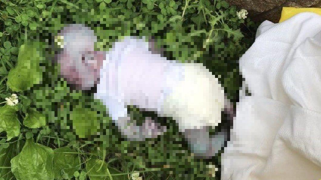 草叢內驚見「嬰兒屍體」。圖/翻攝自推特@njburkett7 悚!草叢驚見嬰兒「全身傷痕慘死」 真相讓警方怒了