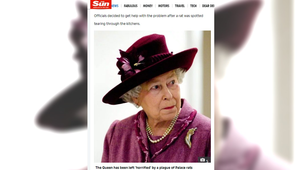 現年93歲的英國女王曾在皇宮內看到老鼠。圖/翻攝自太陽報