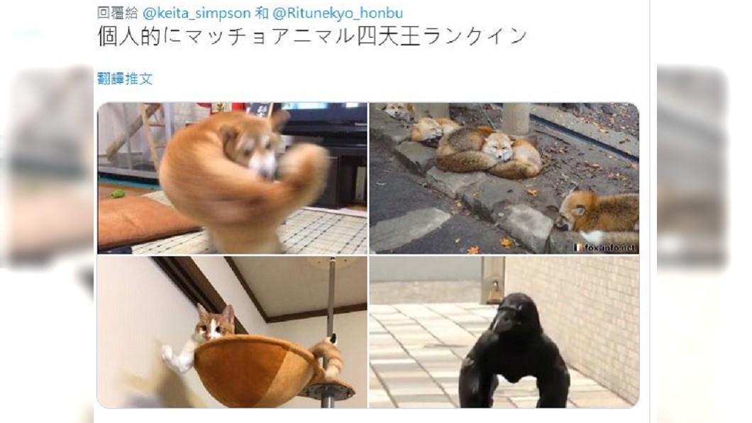 圖/翻攝自@tachiyomimaster推特
